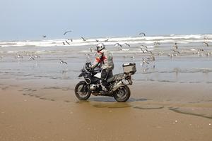 Monsieur Pingouin, une histoire en moto